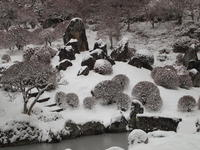 雪 2011/02/11