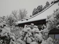 雪 2011/02/12