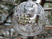 ガラスの球